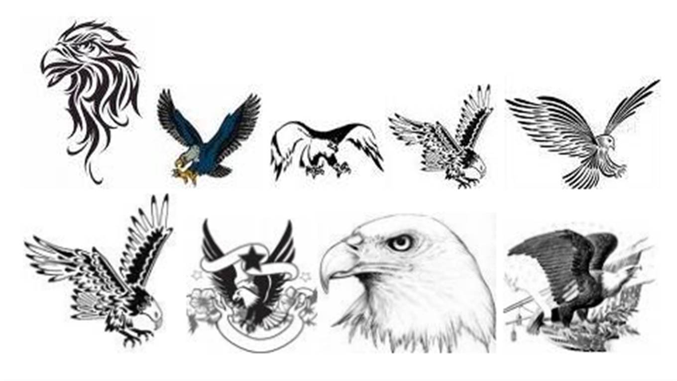 10 Incredible Eagle Tattoo Designs And Ideas in proportions 1360 X 765