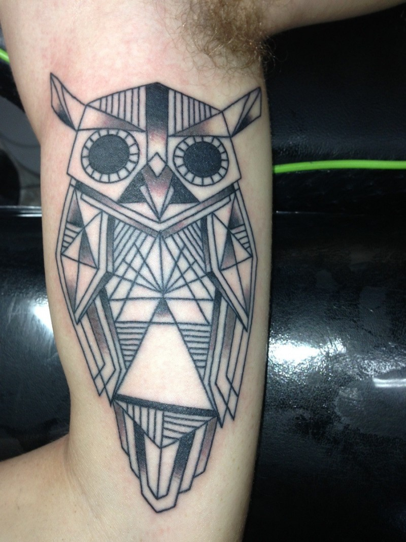 51 Owl Tattoos On Arm within size 800 X 1066