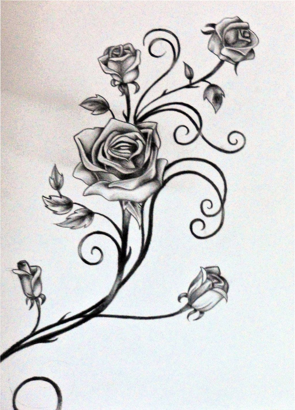Drawings Of Vines And Leaves Roses And The Vine Rosilutfi intended for proportions 1024 X 1422