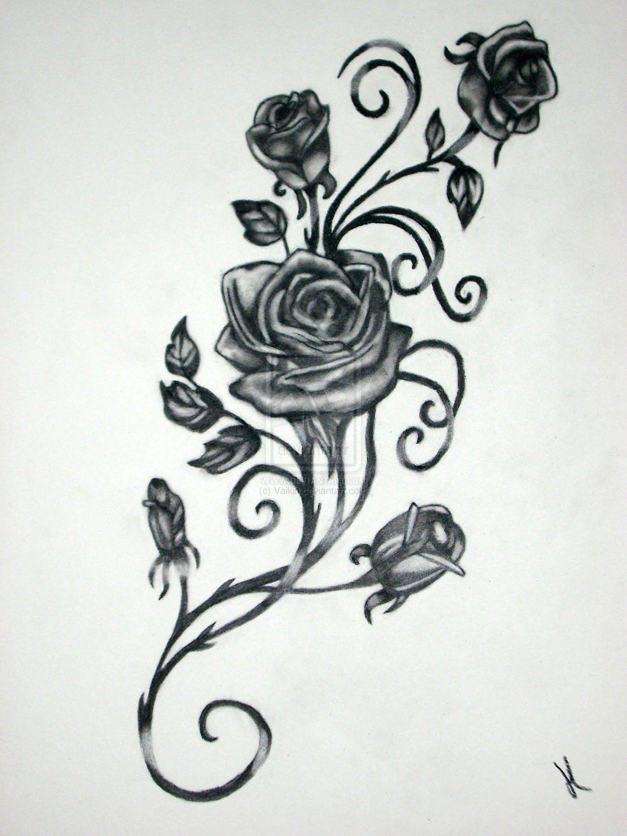 Roses With Vines Drawing Rose Vine Drawing Black Rose Vine Tattoos for measurements 1280 X 1706