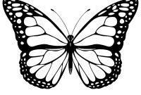 Classy Cool Monarch Butterfly Tattoo Stencil Cricut Butterfly inside size 1200 X 1200
