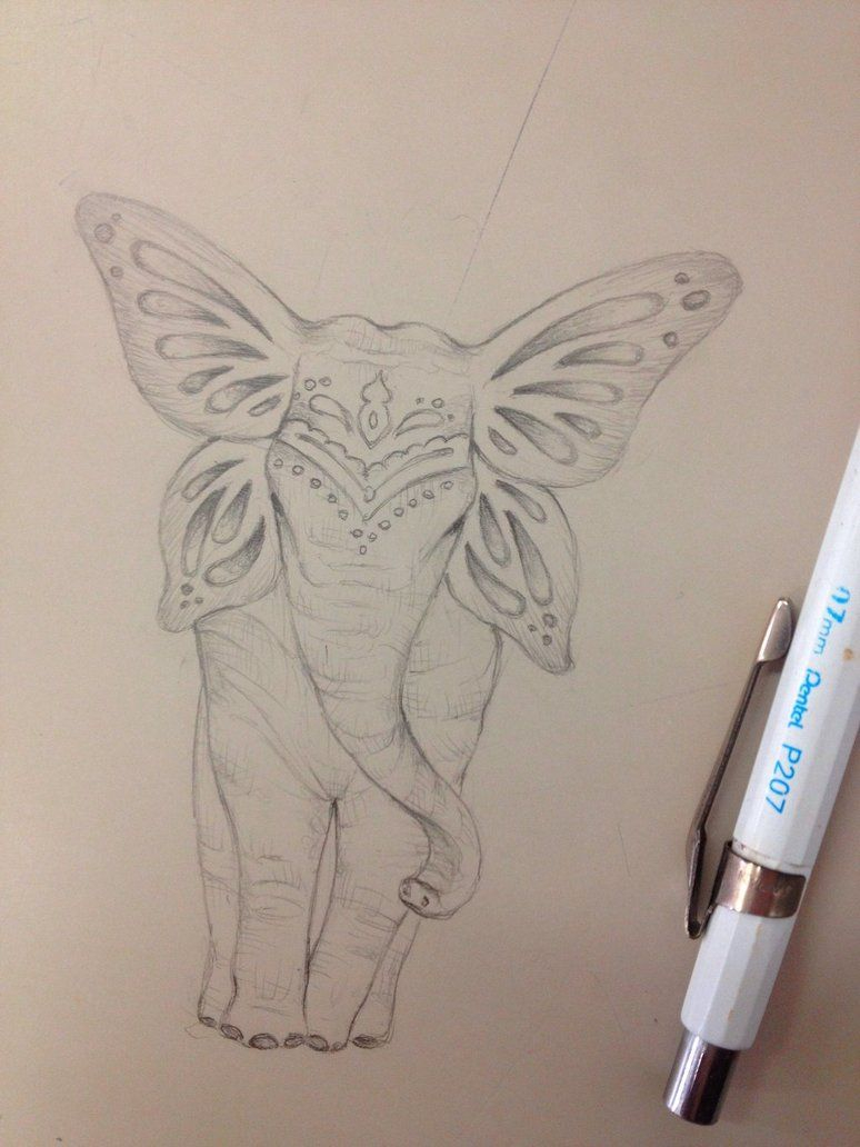 Elephant With Butterfly Ears Google Tattoo Ideas for dimensions 774 X 1032