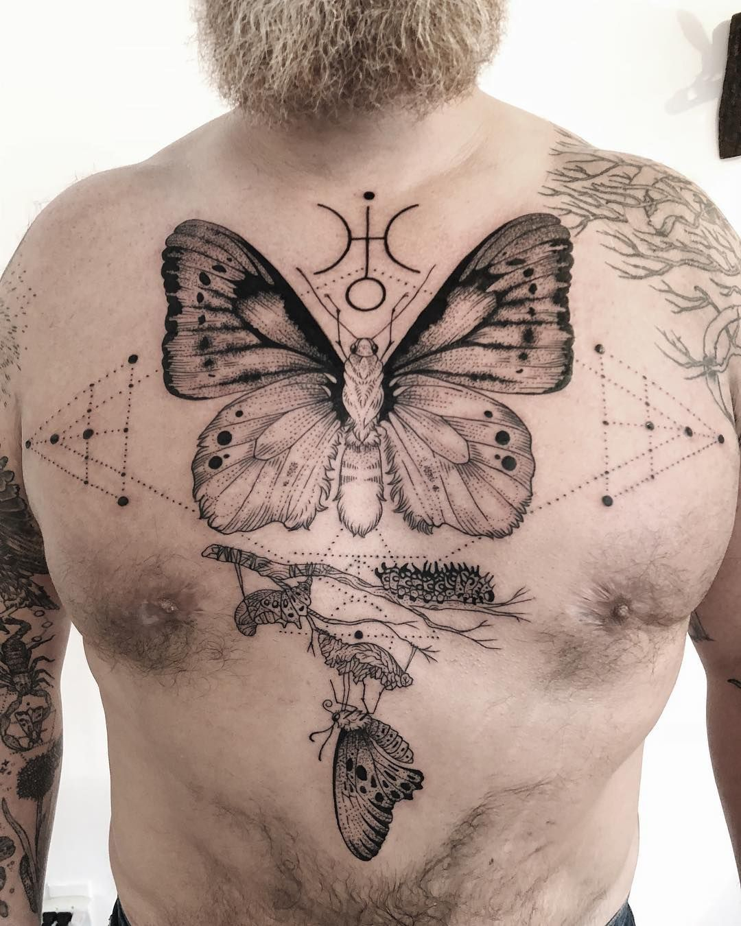 Metamorphosis Of A Butterfly Freeorgy Arthropodtattoos pertaining to measurements 1080 X 1350