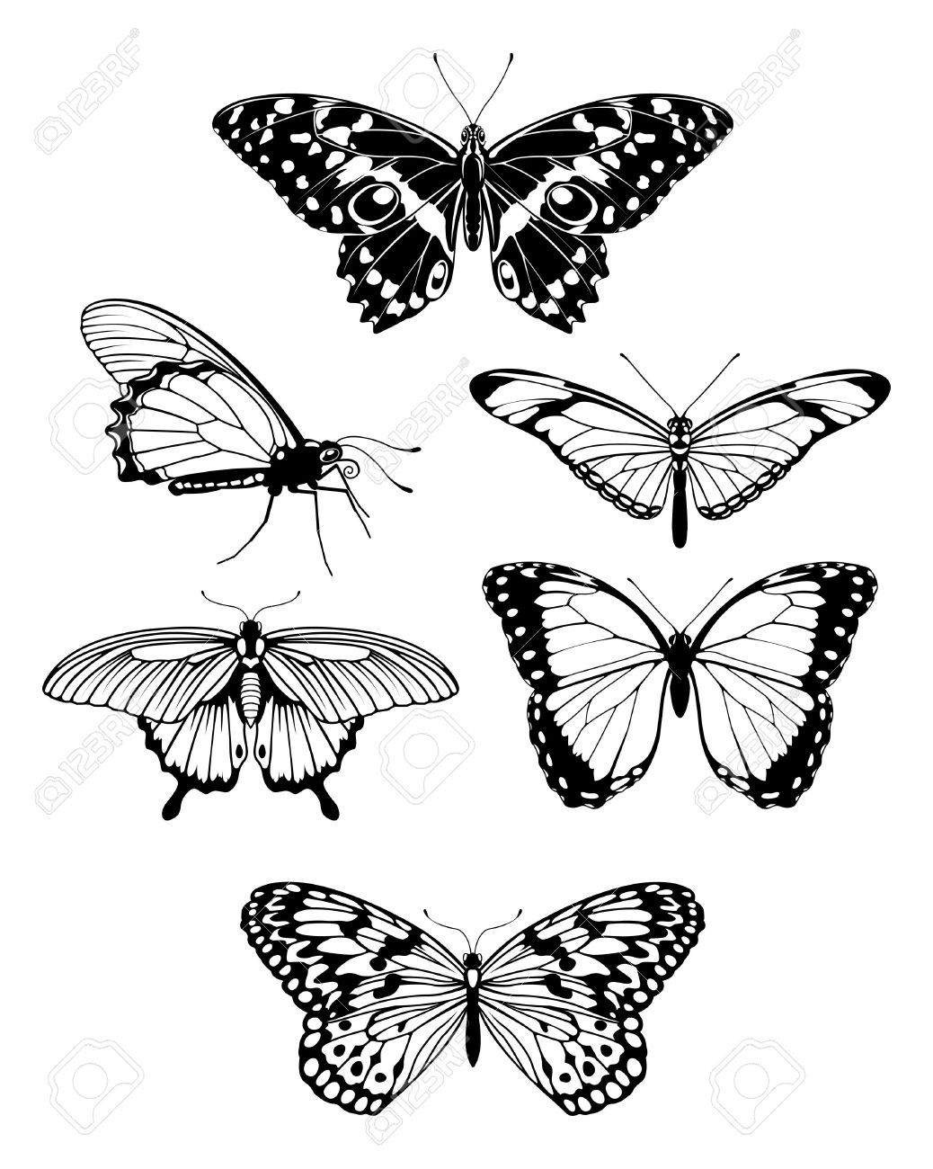 Set Of Beautiful Butterflies Tattoos Design Drawing Butterfly for proportions 1038 X 1300