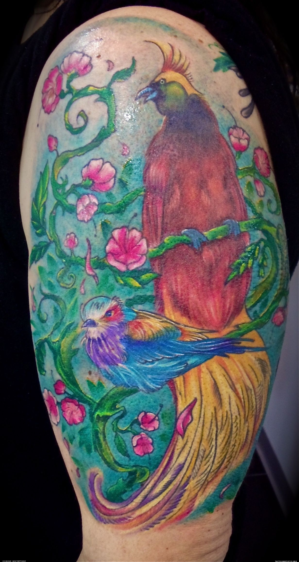 Sleeve Bird Butterfly Images And Tattoos Bird Of Paradise pertaining to dimensions 1231 X 2310